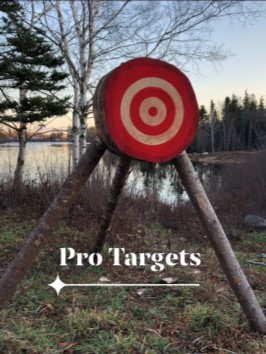 Professional Banded Axe Throwing Target